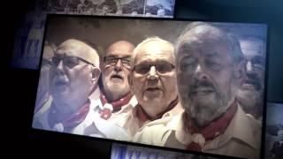 HSV-Vereinshymne (offiziell) - Shantychor DE WINDJAMMERS