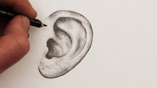 Easy Way To Draw EARS | How to draw ears | Step By Step | Drawing Lesson | For Kids