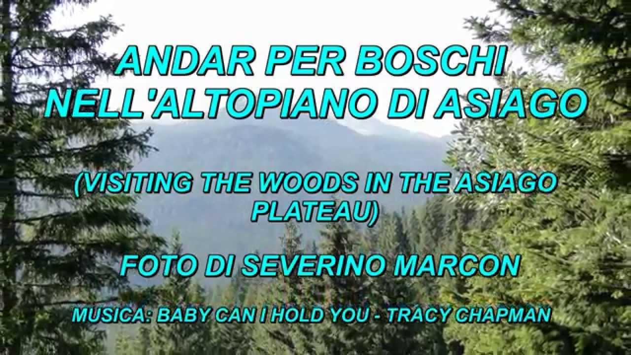 Andar per boschi nell 39 altopiano di asiago youtube for Altopiano di asiago appartamenti vacanze