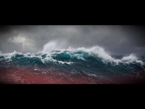 A Monster Wave Off New Zealand Just Set a New Southern Hemisphere Height Record