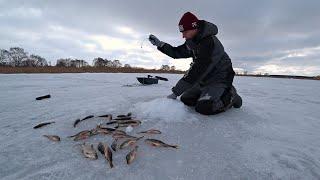 НЕ ДАЮТ ОПУСТИТЬ С ОДНОЙ ЛУНКИ В ГЛУХОЗИМЬЕ Зимняя рыбалка 2021