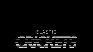 CRICKETS -  ELASTIC