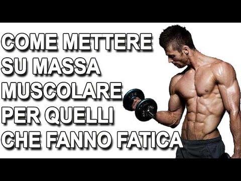 diete per aumentare la massa muscolare ectomorfa