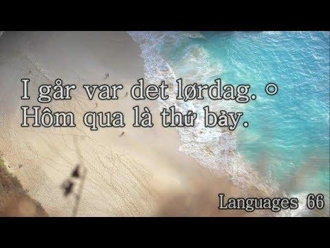 Learning Vietnamese To Norsk/Norwegian #03