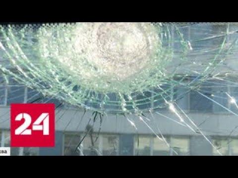 Жителей Северного Чертанова атакуют вороны - Россия 24