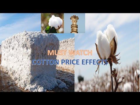 cotton price drivers