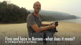 Borneo Futures-  Dr. Erik Meijaard speaks about the fires in Borneo