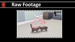 Raw Footage Pets Woohoo and Birth in The Sims 4