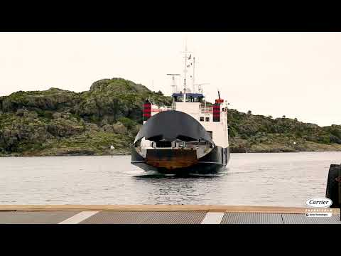 Carrier Transicold - The Cool and Tender Salmon Experience