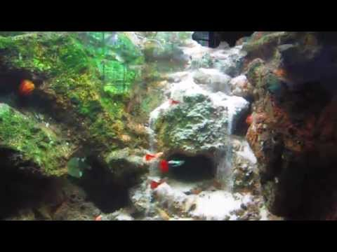 Diy aquarium underwater waterfall sand waterfall for Waterfall fish tank