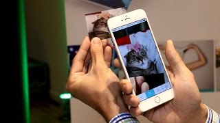 Video Print a Photo, Then Watch It Come to Life with LifePrint Photo Printer and App download MP3, 3GP, MP4, WEBM, AVI, FLV Juli 2018