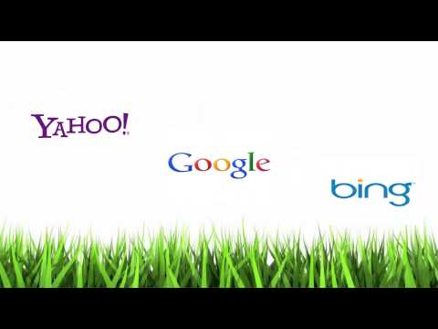 SEO Guidelines - What is SEO?