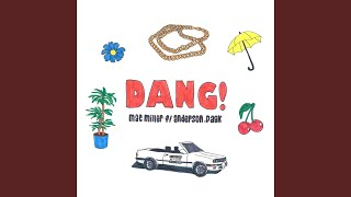 Dang! (feat. Anderson .Paak) (Radio Edit)