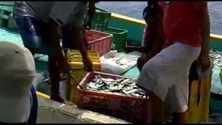 nelayan desa pulau mandangin sampang madura part 2