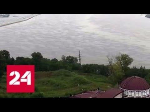 """""""Погода 24"""": пик паводка в Амурской области ожидается 27 июля - Россия 24"""