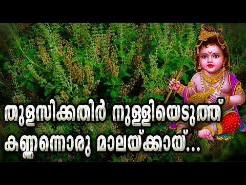 തുളസിക്കതിർ-നുള്ളിയെടുത്ത്-|-thulasikathir-nulliyeduthu-female-|-sree-krishna-devotioanal-songs