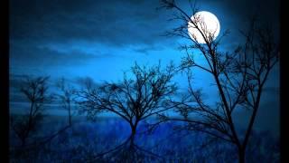 Guter Mond, du gehst so stille