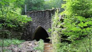 Castle Bridge On ASP 1, Allegany State Park