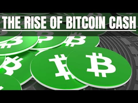 The Rise of Bitcoin Cash | Is $BCH here to stay?