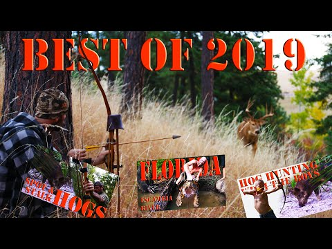 Traditional Bow Hunting 2019 Highlights