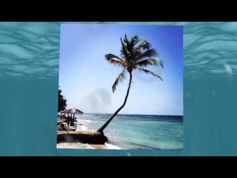 9902 Scott and Maricella Winter Getaway Florida + Puerto Rico  Global Travel Network Trip
