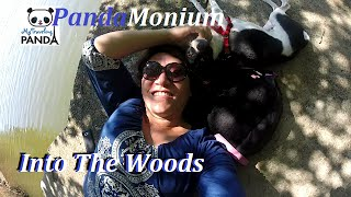 Into The Woods Haley Farm State Park, Rhode Island & Caboose - RV Living VLog