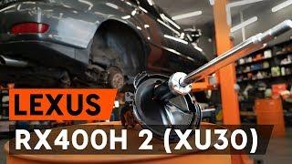Manuel du propriétaire Lexus RX AL10 en ligne