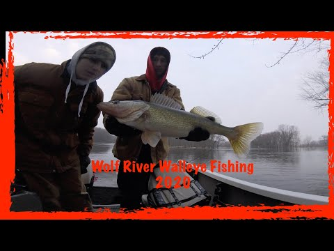 Spring Walleye Fishing On Wolf River Wisconsin (2020)