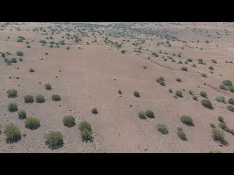 SOLD By Compass Land USA - 1.41 Acres – Off The Grid! In Concho, Apache County AZ
