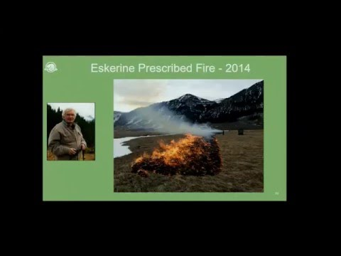 'Fire Management in Waterton Lakes National Park; Recent Prescribed and Wildfire Experiences''