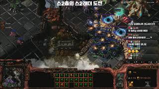 스타크래프트2 초보의 래더도전기(StarCraft2 Ladder)