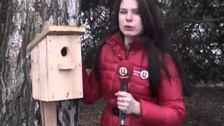 В Саратове отметили Международный день птиц