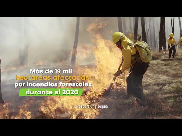 No juegues con fuego - Gobierno de Michoacán