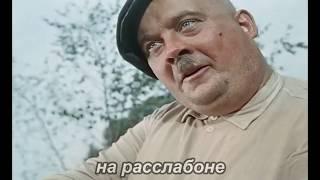 Путин VS самогонщики  Часть 1 Юмор, приколы, позитив, свежее