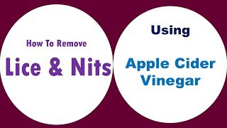 How To Use Apple Cider Vinegar For Lice And Nits - How To Remove Lice And Nits Naturally