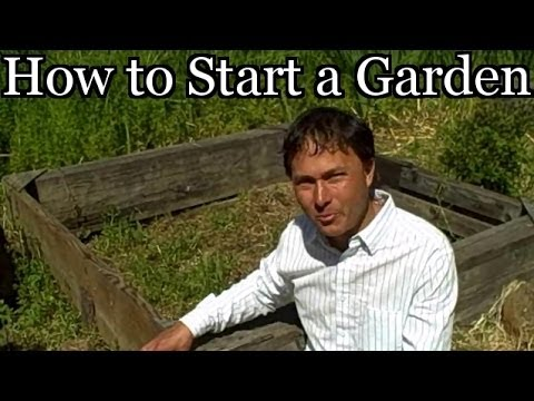 How to Start a Vegetable Garden at a New House - Planning