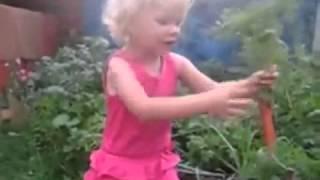 Морковь довела ребенка до мата...