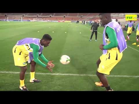 Dernier entraînement des lions avant le match contre l'Afrique du Sud