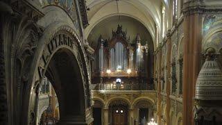 The M. Cavaillé-Coll in Buenos Aires – Adoro te Devote