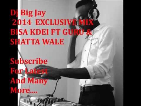 MIX Exclusive 2014 BISA KDEI FT GURU & SHATTA WALE -  Dj Big Jay