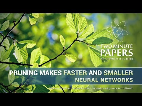 Pruning Makes Faster and Smaller Neural Networks | Two Minute Papers #229