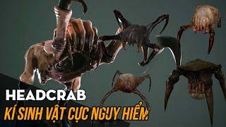 Kí sinh Headcrab đáng sợ đến mức nào? Hồ sơ sinh học game - Tập 2