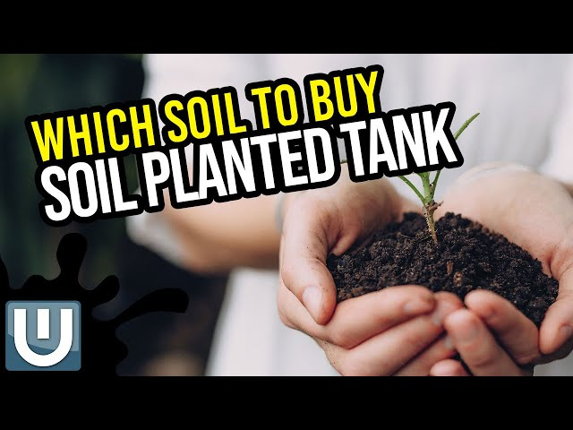 Buying Soil Substrate Guide for a Planted Tank
