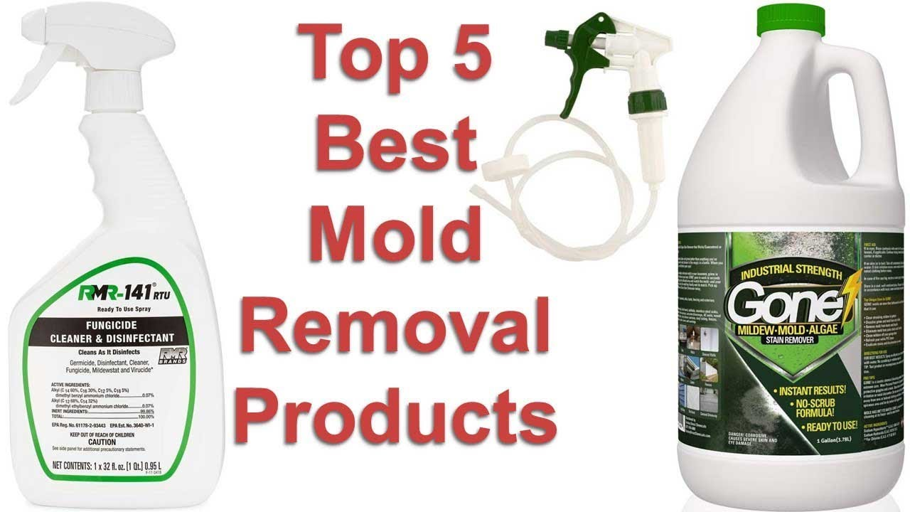 5 Best Mold Removal Products 2019 Reviews