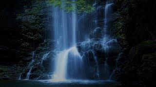 Beautiful Japanese Music - Healing Waters