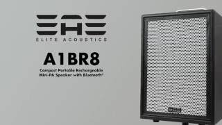 Elite Acoustics A1-4 (A1BR8) Compact Rechargeable Acoustic AMP with Bluetooth®