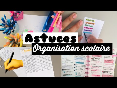  BACK TO SCHOOL  Organisation scolaire
