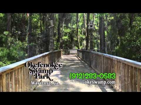 Okefenokee Swamp   Explore 2014