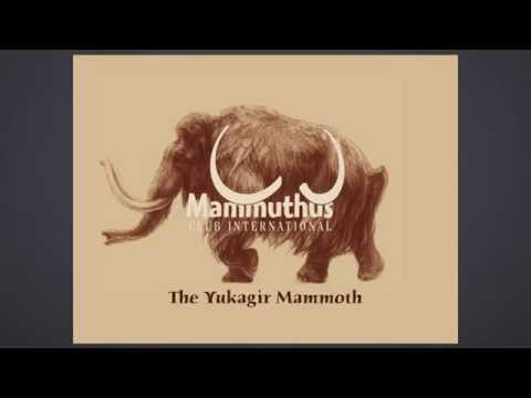 Woolly mammoths of the Siberian Tundra - Dick Mol lecture