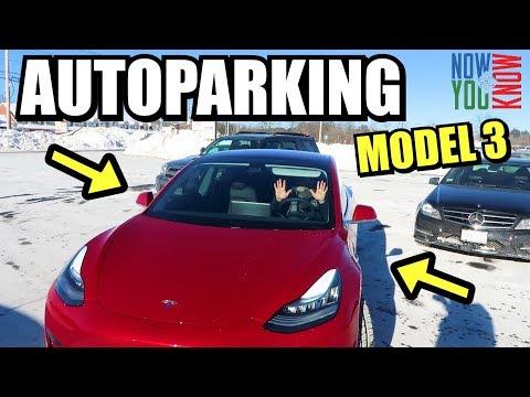Tesla Model 3 Autoparking!
